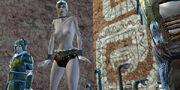 Kiri-Stripped