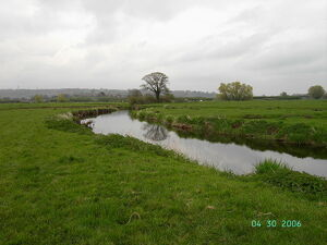 River Axe Devon.JPG