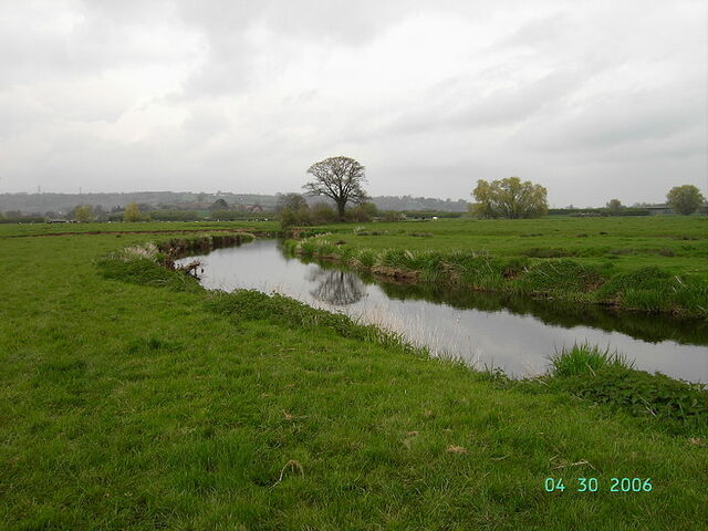 Plik:River Axe Devon.JPG