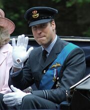 491px-Prince William of Wales RAF.jpg