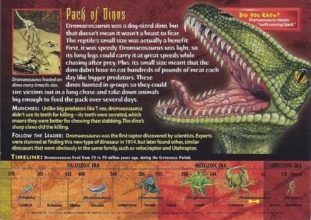 Dromaeosaurus back