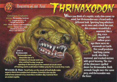 Thrinaxodon front