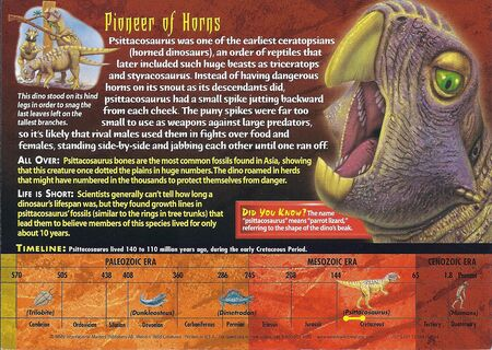 Psittacosaurus back