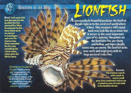 Lionfish front