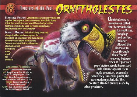 Ornitholestes front