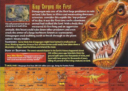 Dinogorgon back