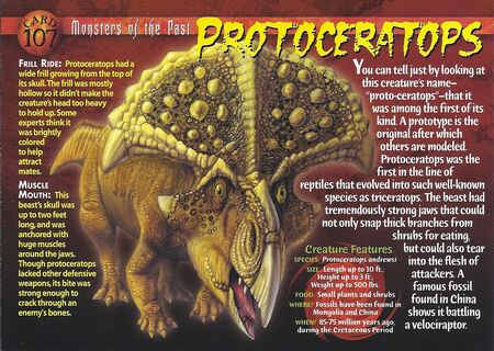 Protoceratops front