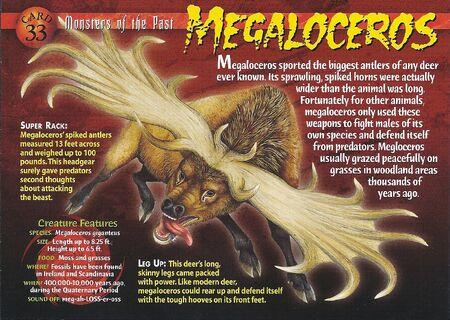 Megaloceros front
