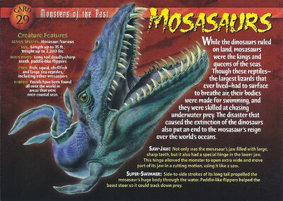 Mosasaurs front