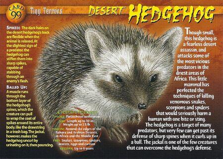Desert Hedgehog front