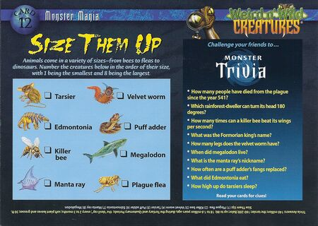 Monster Mania 12a