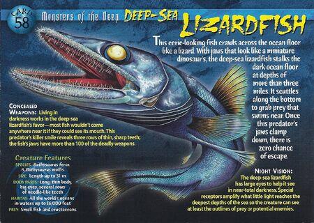 Deep-Sea Lizardfish front