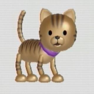 A cat standing.