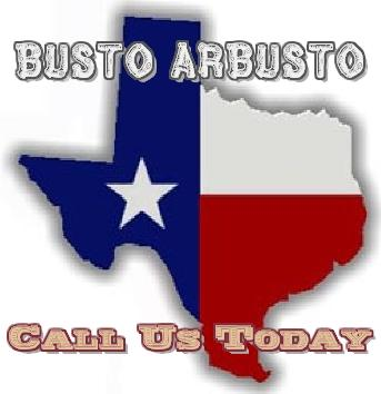 File:Busto Arbusto Call US.jpg