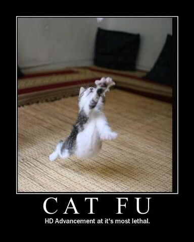 File:Cat-fu-demotivational-poster.jpg