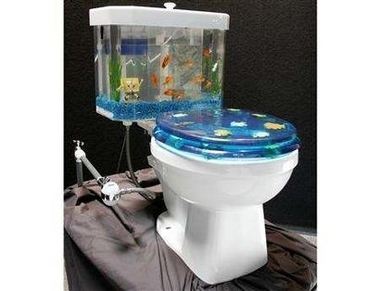 File:Toilet-shapedAquarium.jpg