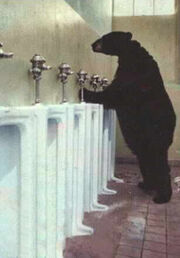 BearStandingUrinal