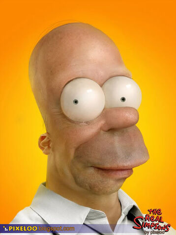 File:Real-homer-simpson.jpg