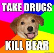 Advicedog3