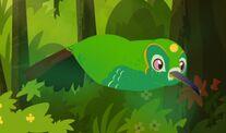 EmeraldChinnedHummingbird
