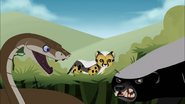 Black Mamba Vs Honey Badger