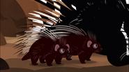 Porqi-pets