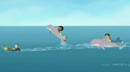 Dolphin.playing.wildkratts