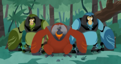 Orangutan.powers