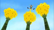 Sticky Pollen Ride