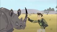 Chris touching Rhino