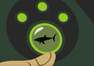 Shark.disk