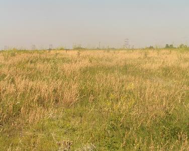 Habitat, Upper drysoilmeadow