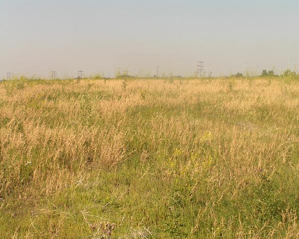 File:Habitat, Upper drysoilmeadow.png