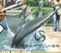 BasilosaurusWC