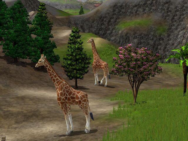 File:Wildlifepark2 08.jpg