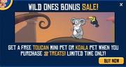 Koala bonus sale