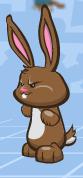 File:Rabbit pic.png