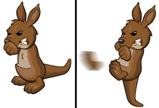 Kickkangaroo