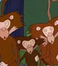 Marmosets-the-wild-thornberrys-35 6-0