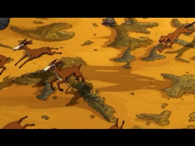 File:Chasing Gazelles.JPG
