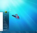 Development of Windows 7