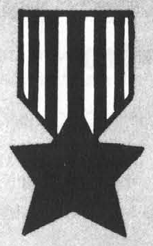File:Bronze star.png