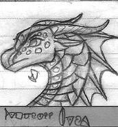 Sketch Princess Orca