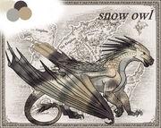 Princess snow owl ref sheet