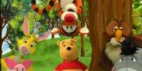 Day in the Life of a Pooh