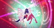 Musa 2D Sirenix