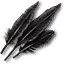 Tw3 griffin feathers