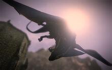 Dragon screen1
