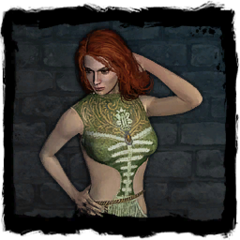 Journal image in <i>The Witcher</i>.
