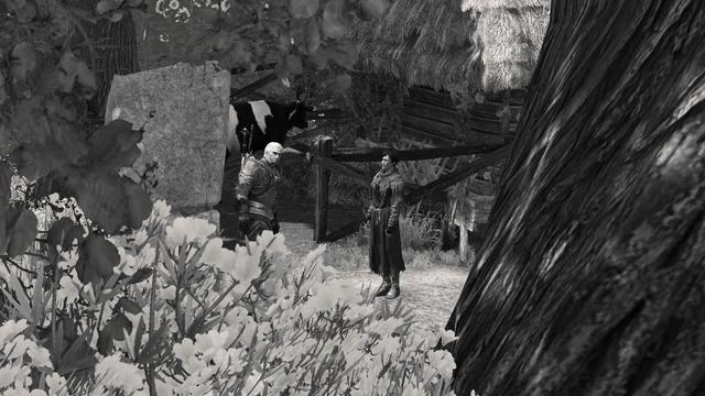 File:Tw3 Equine Phantoms gaze of demon-horse.png
